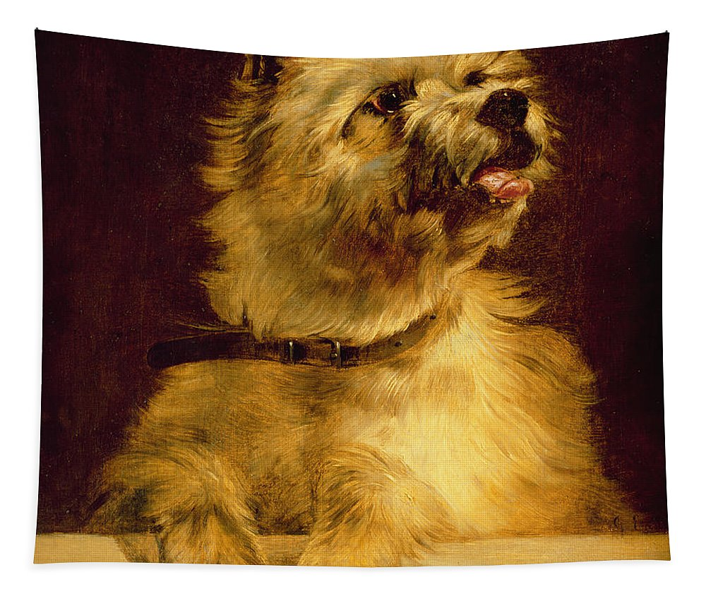 Cairn Tapestry featuring the painting Cairn Terrier  by George Earl