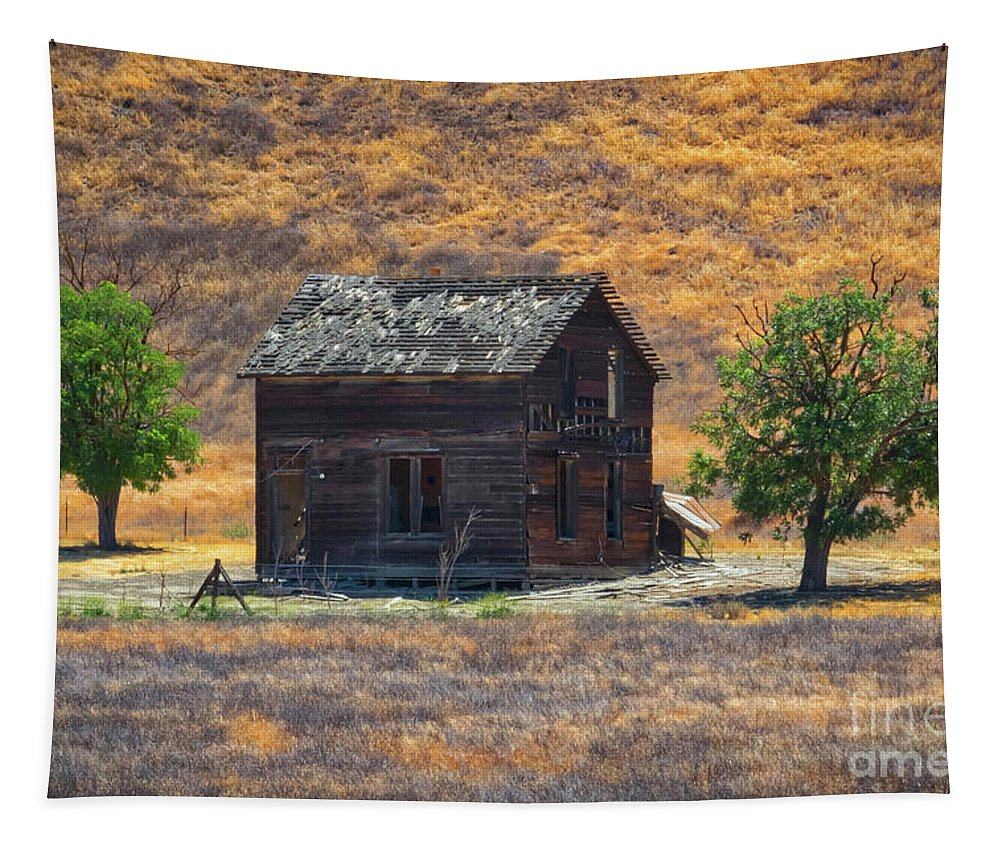 Calico Grass Tapestry featuring the photograph Calico Grass by Mitch Shindelbower
