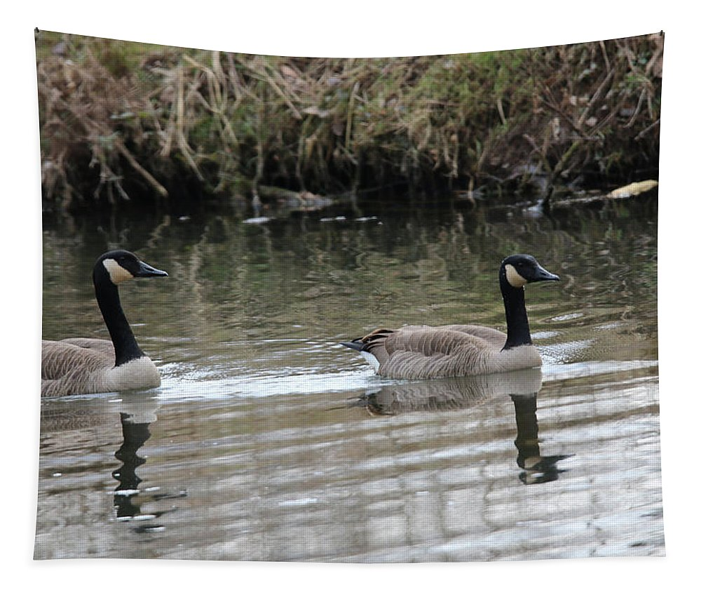 Canadian Geese Tapestry featuring the photograph Canadian Geese by Michael Munster