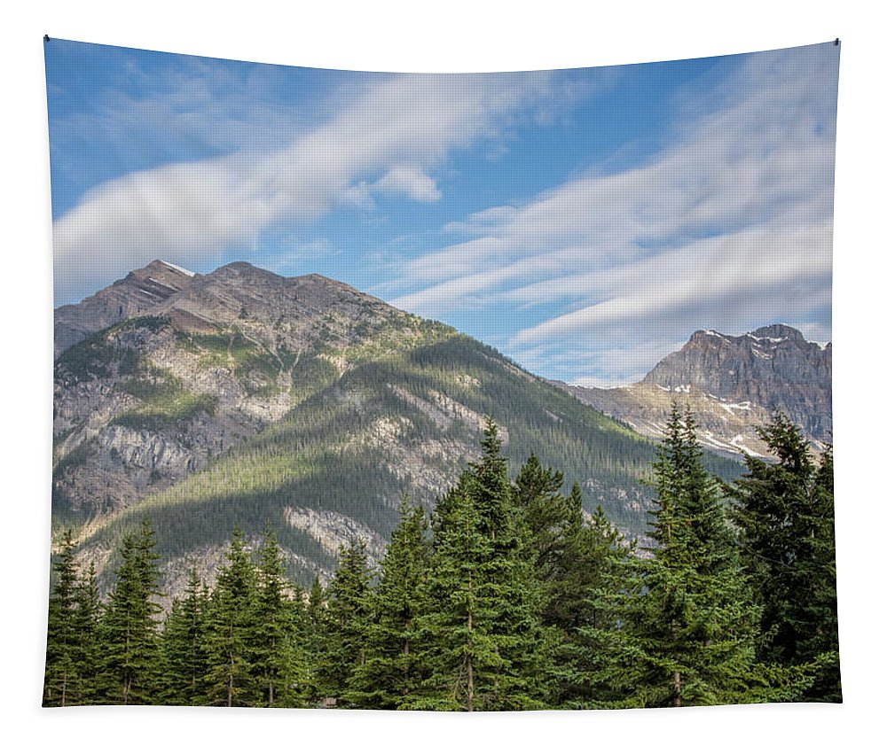 Joan Carroll Tapestry featuring the photograph Canadian Rockies Near Kicking Horse Pass by Joan Carroll