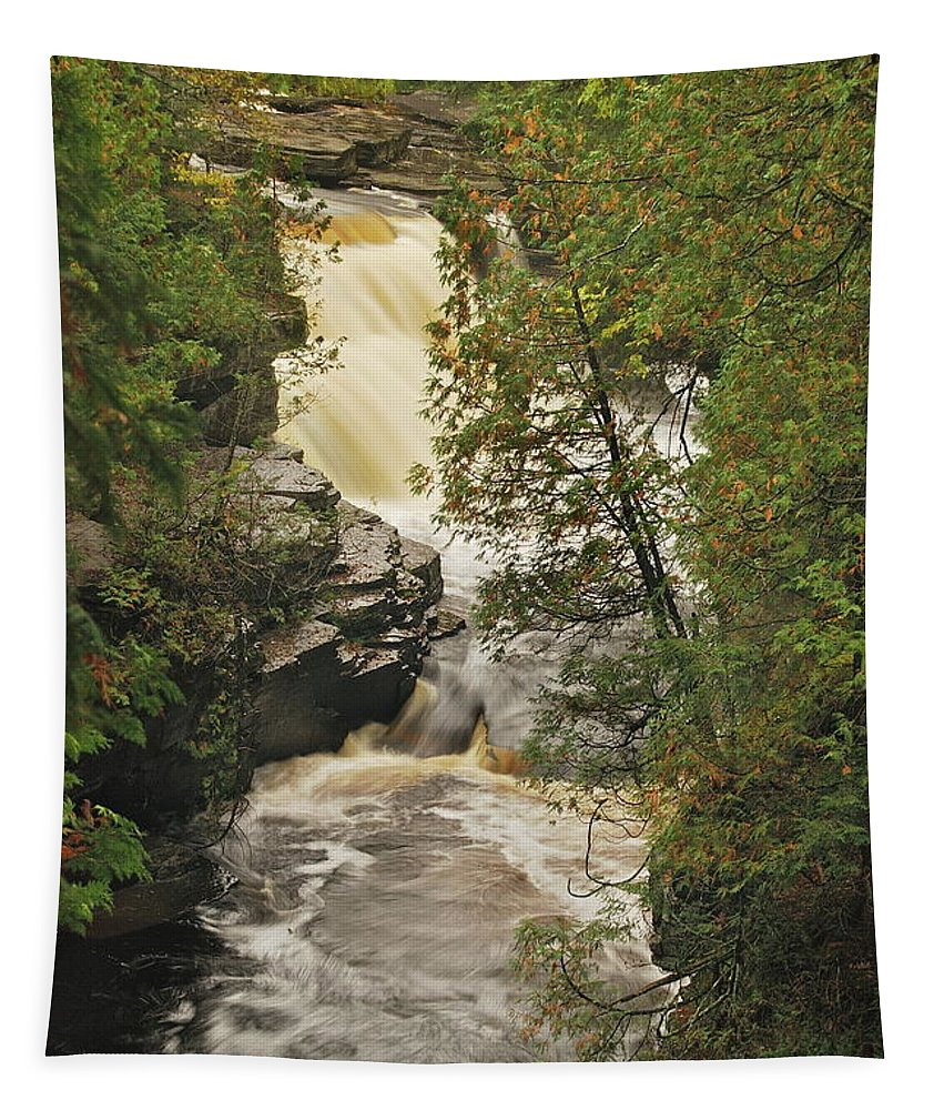 Michigan Tapestry featuring the photograph Canyon Falls 2 by Michael Peychich
