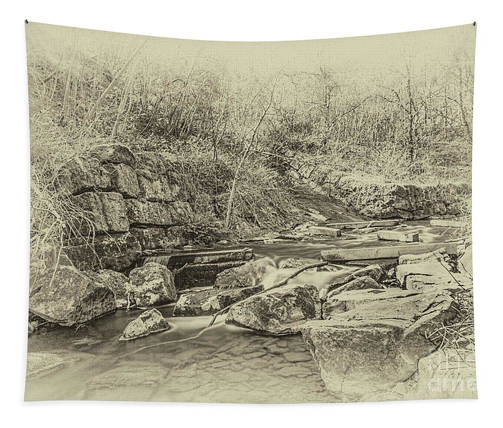 Caradocs Falls Tapestry featuring the photograph Caradocs Falls 2 Antique by Steve Purnell
