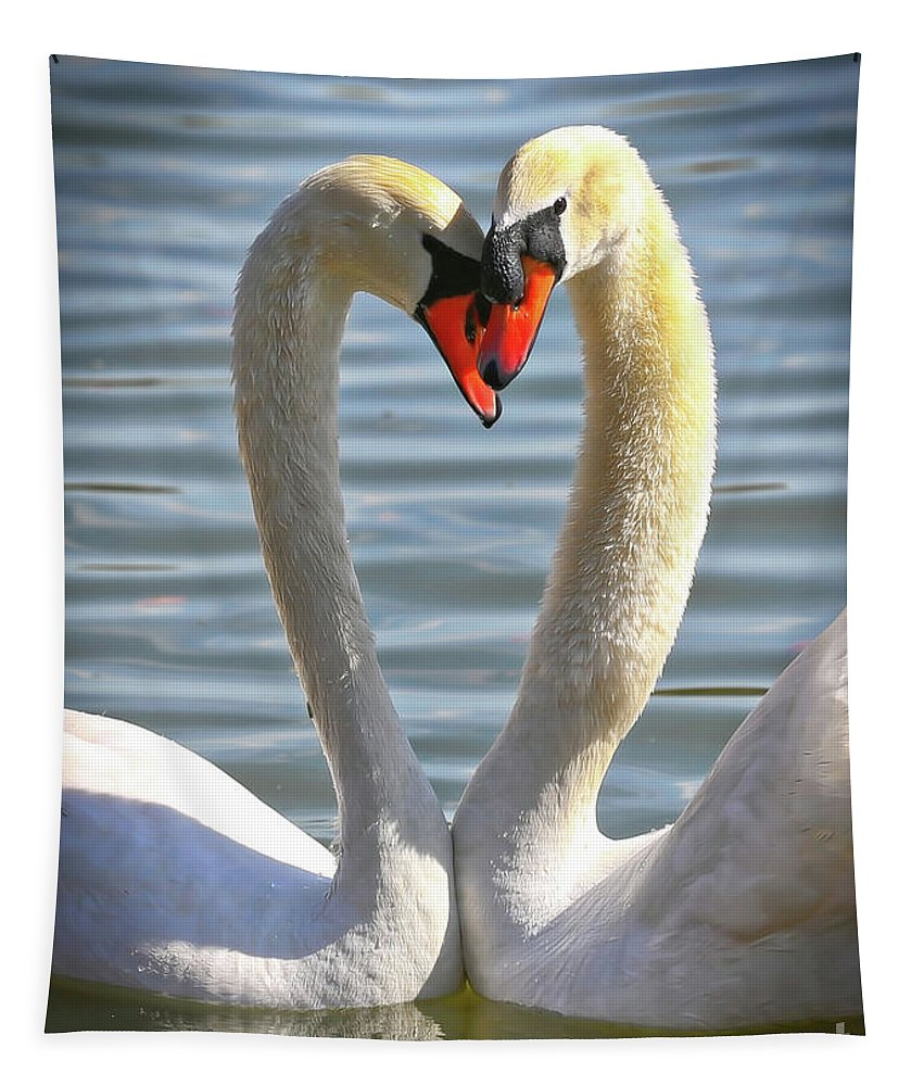 Swans Tapestry featuring the photograph Caring Swans by Carol Groenen