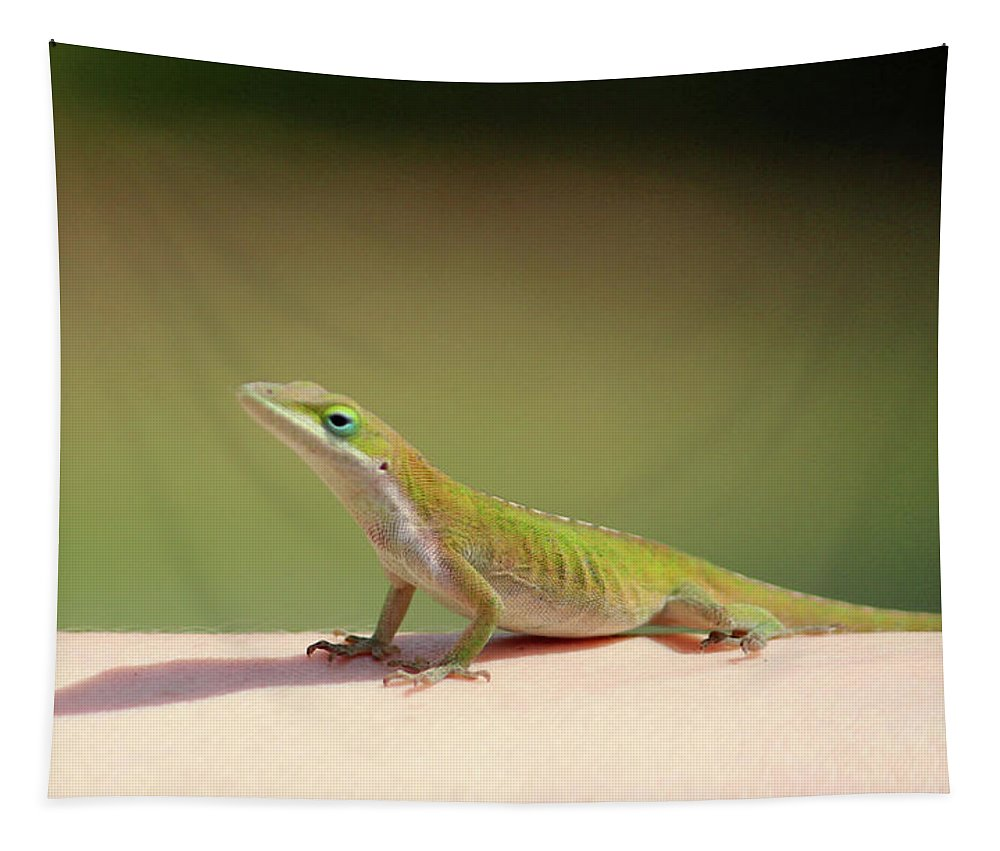 Anolis Carolinenis Tapestry featuring the photograph Carolina Anole by Cynthia Guinn