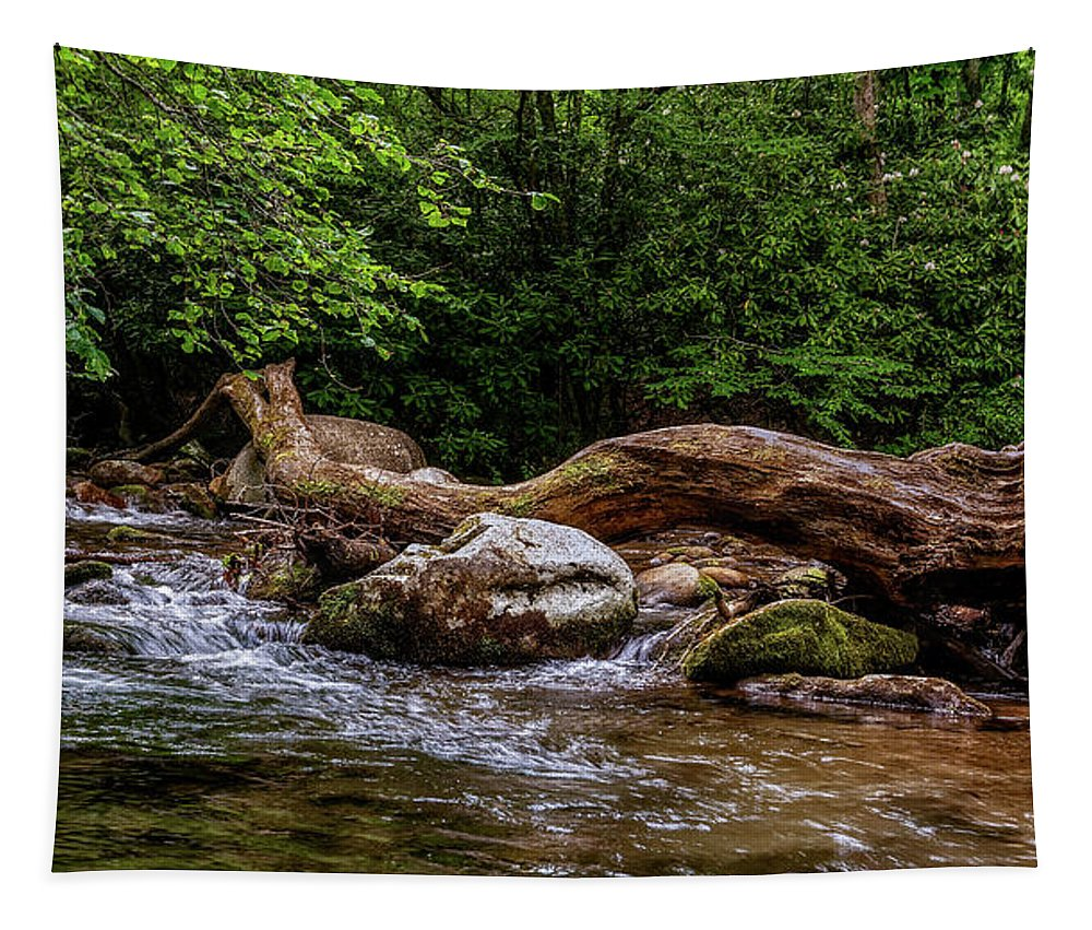 Christopher Holmes Photography Tapestry featuring the photograph Carolina Stream by Christopher Holmes