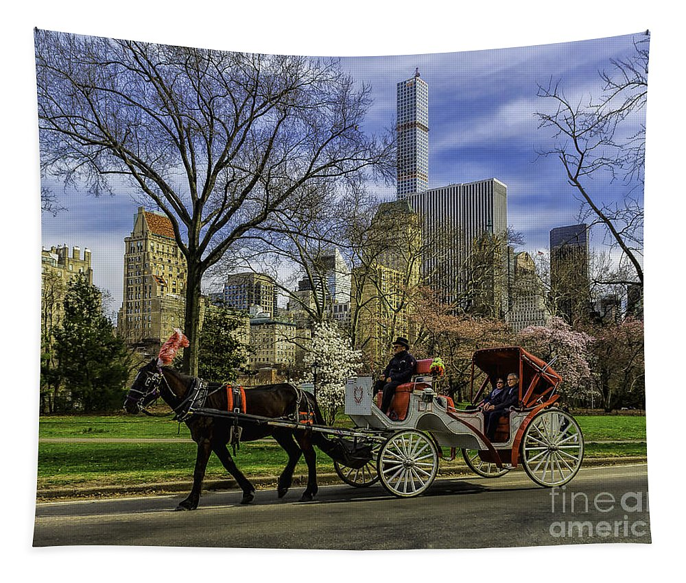 City Tapestry featuring the photograph Carriage Ride In Central Park by Nick Zelinsky