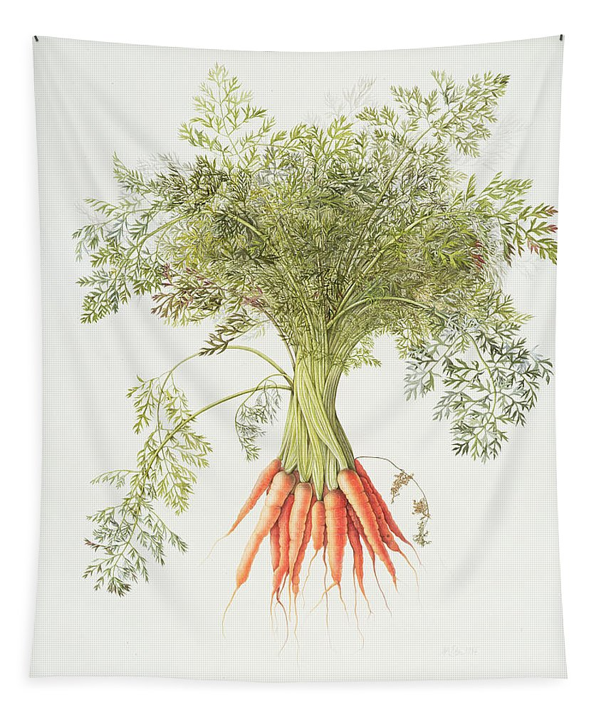 Carrot Tapestry featuring the painting Carrots by Margaret Ann Eden