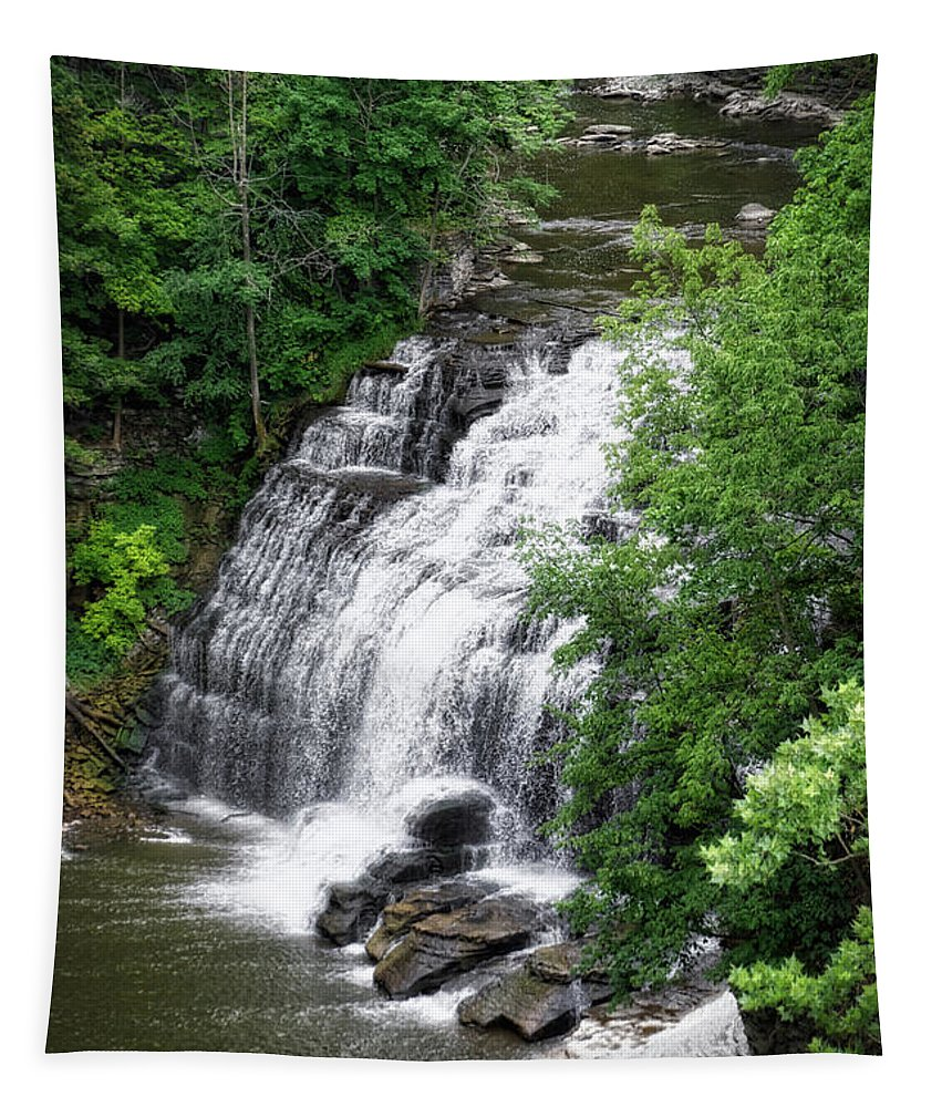 Cornell University Tapestry featuring the photograph Cascadilla Waterfalls Cornell University Ithaca New York 03 by Thomas Woolworth