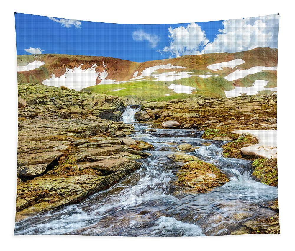 Stream Tapestry featuring the photograph Cascading Source Stream by Daniel Dean