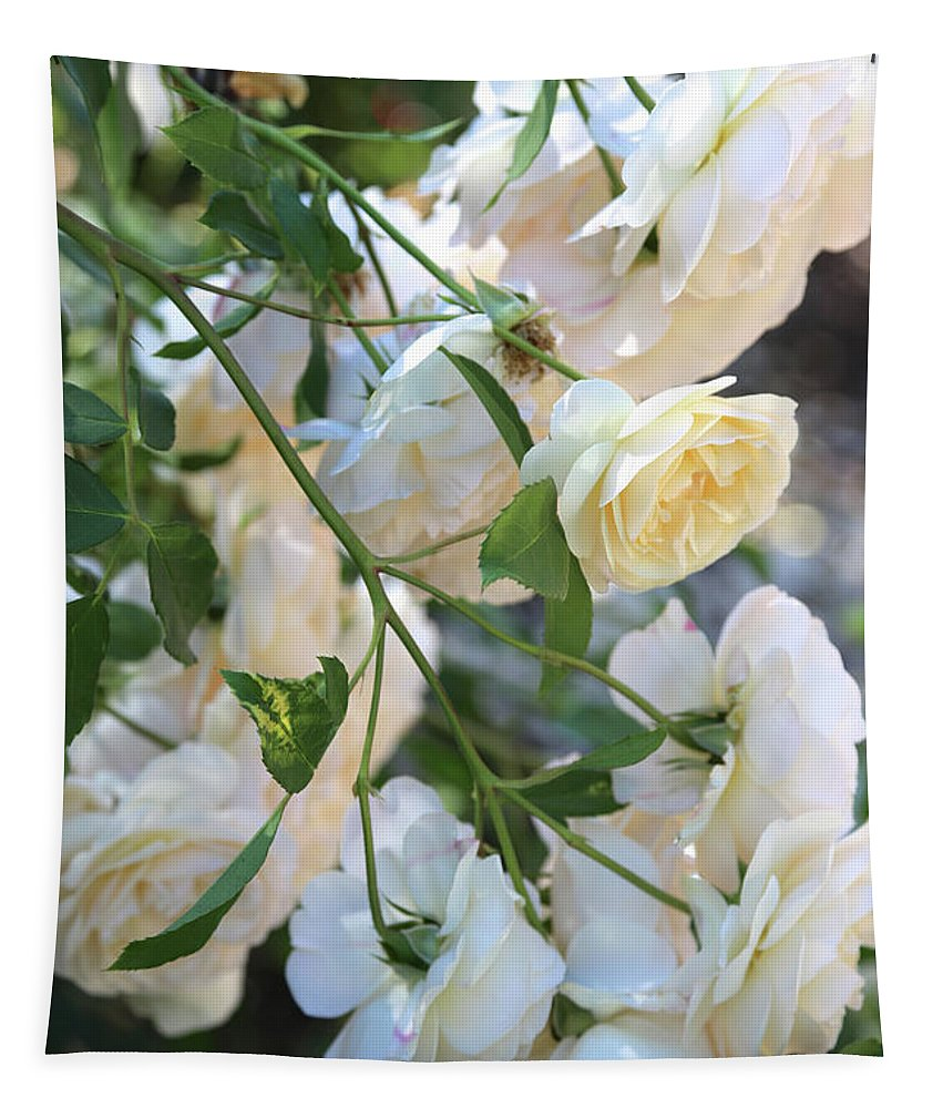 Roses Tapestry featuring the photograph Cascading White Roses by Carol Groenen