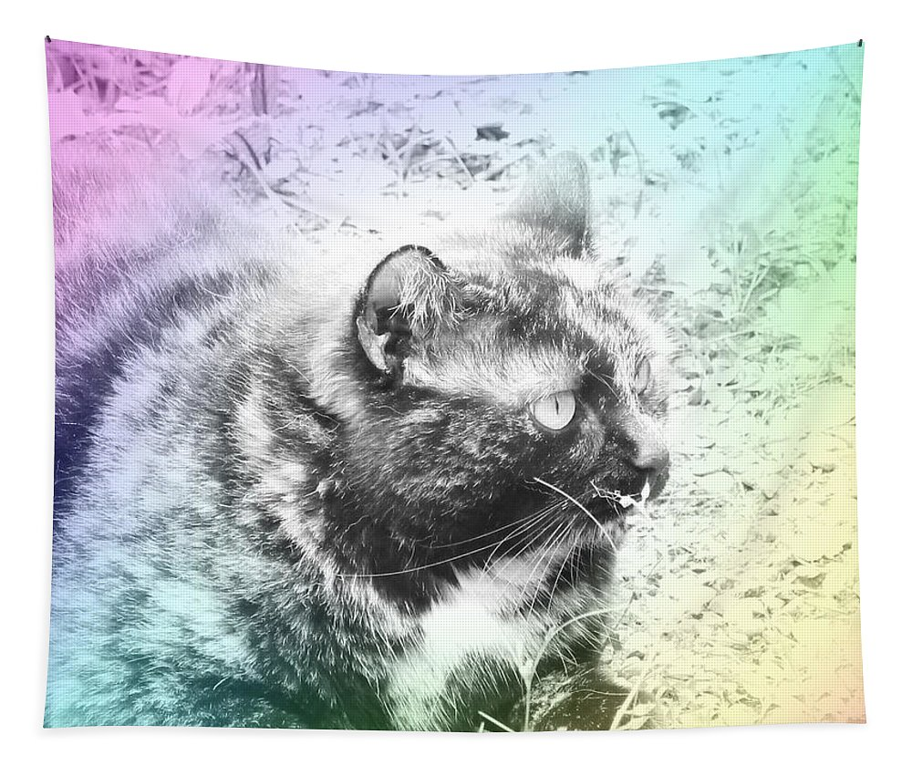 Cat Tapestry featuring the photograph Cat by Lyssjart Sj