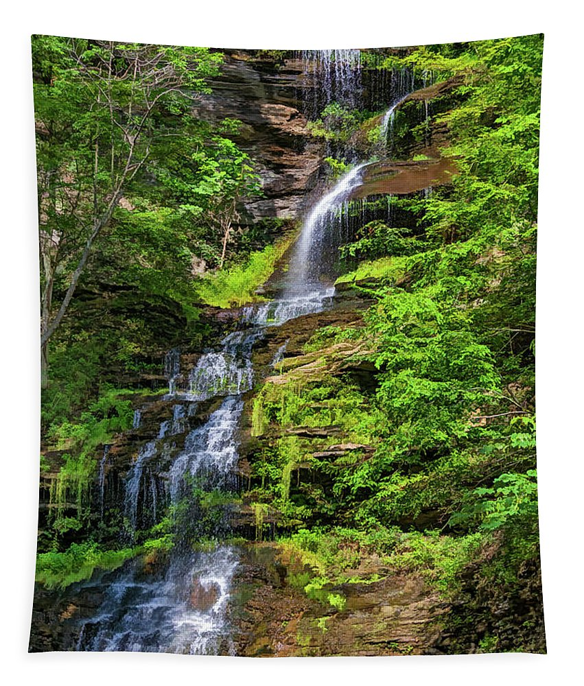 Steve Harrington Tapestry featuring the photograph Cathedral Falls 2 - Paint by Steve Harrington