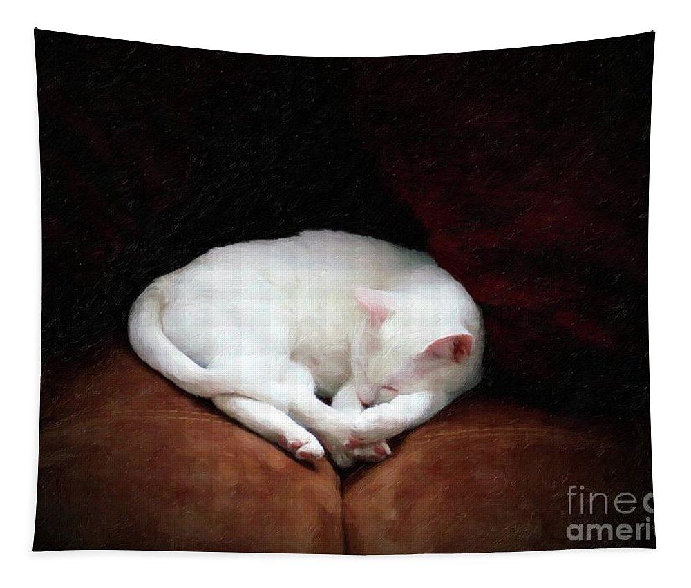 John+kolenberg Tapestry featuring the photograph Catnap by John Kolenberg