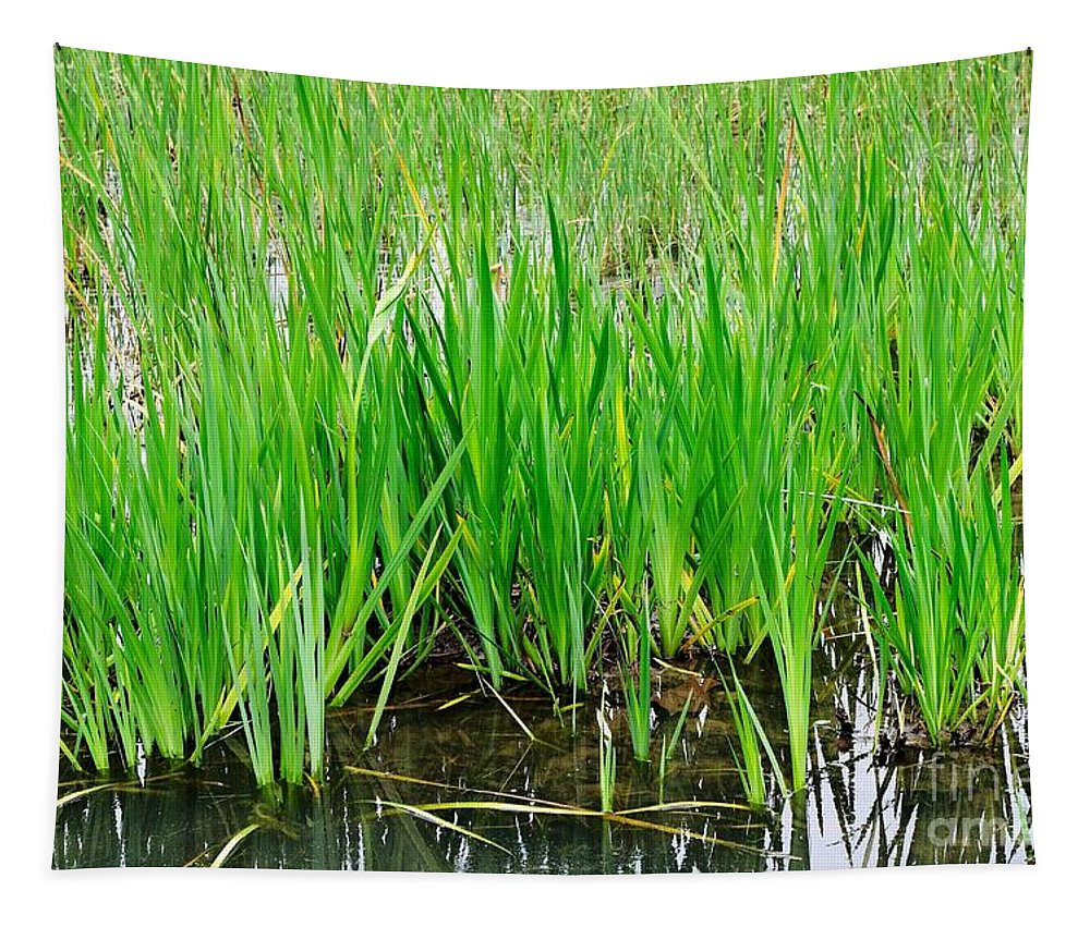 Cattail Tapestry featuring the photograph Cattail Green by Gary Richards