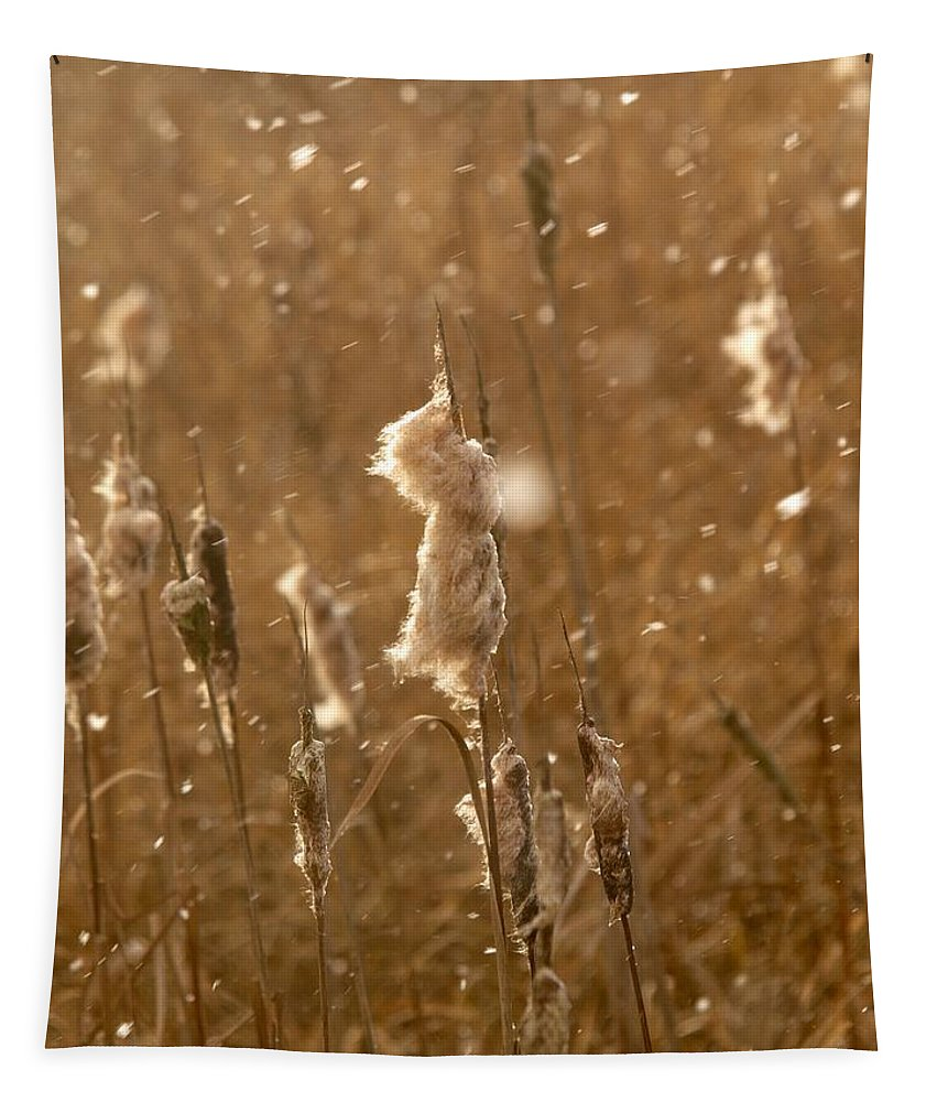 Lehtokukka Tapestry featuring the photograph Cattails In Snowstorm 3 by Jouko Lehto