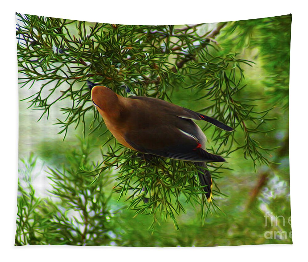 Birds Tapestry featuring the digital art Cedar Waxwing Beauties 1 by Kim Pate