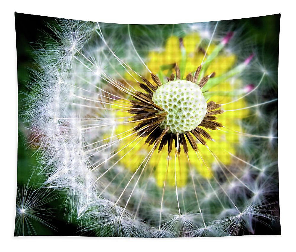 Dandelions Tapestry featuring the photograph Celebration Of Nature by Karen Wiles