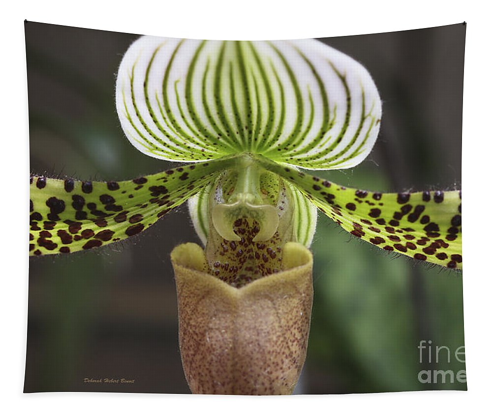 Orchid Tapestry featuring the photograph Center Of Attention by Deborah Benoit