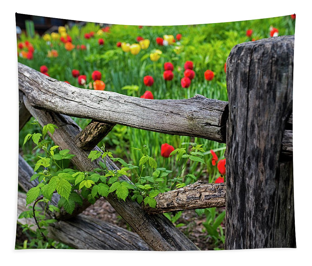 New Tapestry featuring the photograph Central Park Shakespeare Garden New York City Ny Wooden Fence by Toby McGuire