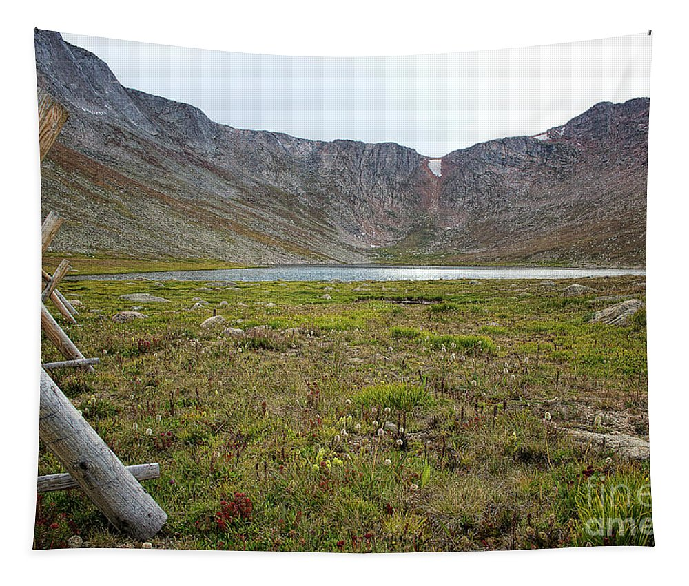 Summit Lake Landscape; Wild Flowers; Alpine Lake Tapestry featuring the photograph Changing Seasons by Jim Garrison