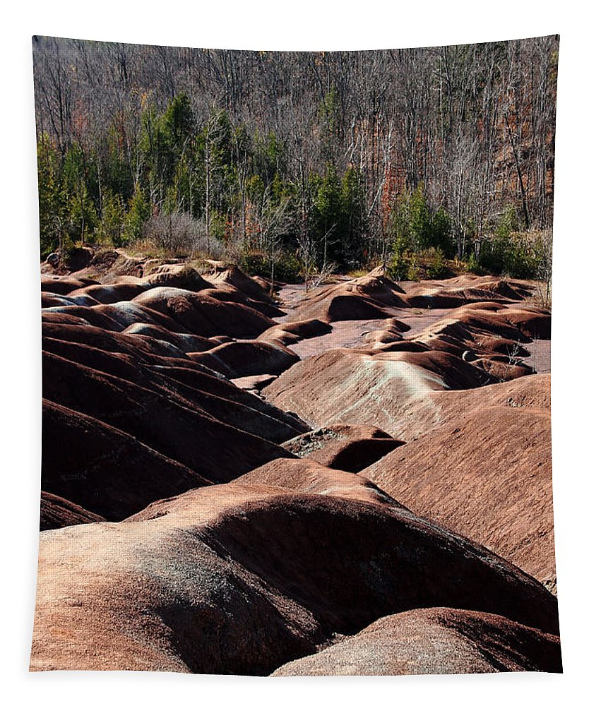 Caledon Tapestry featuring the photograph Cheltenham Badlands by Debbie Oppermann