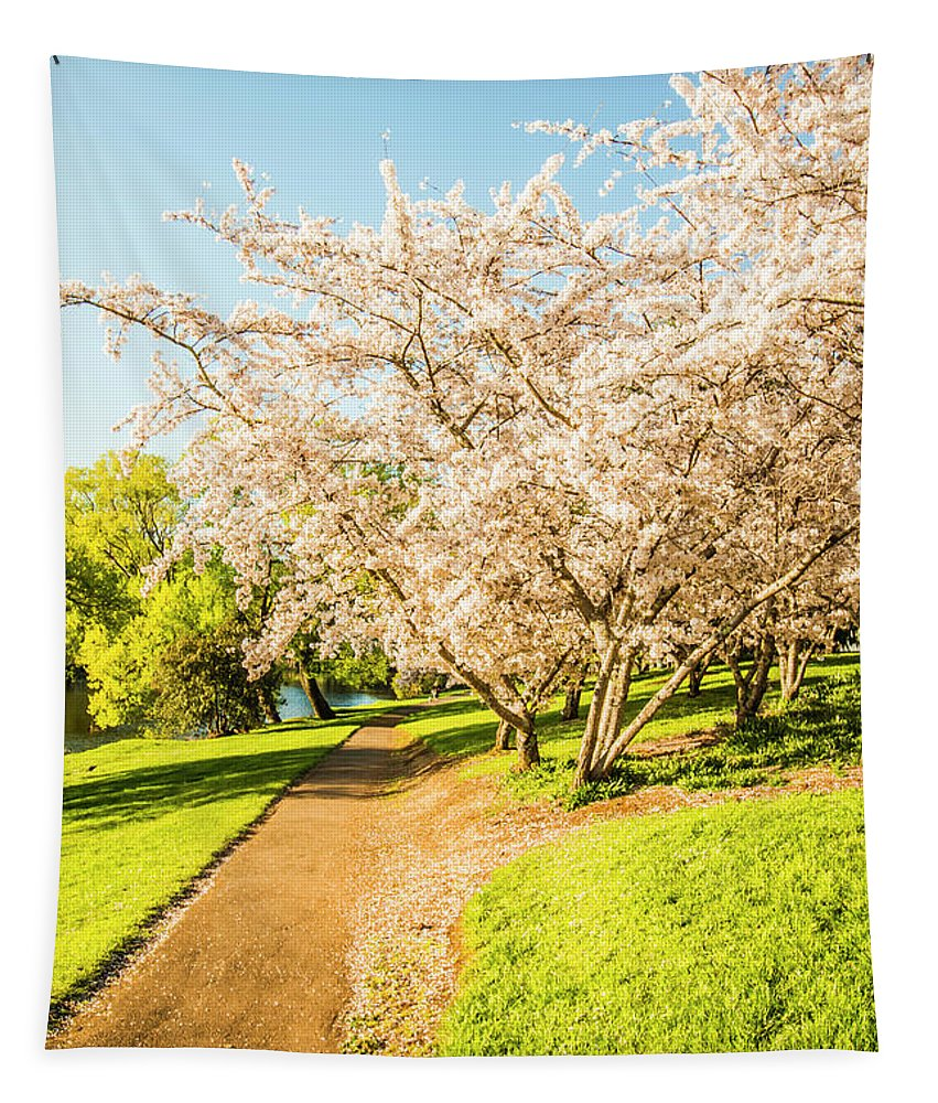 Green Tapestry featuring the photograph Cherry Blossom Lane by Jorgo Photography - Wall Art Gallery
