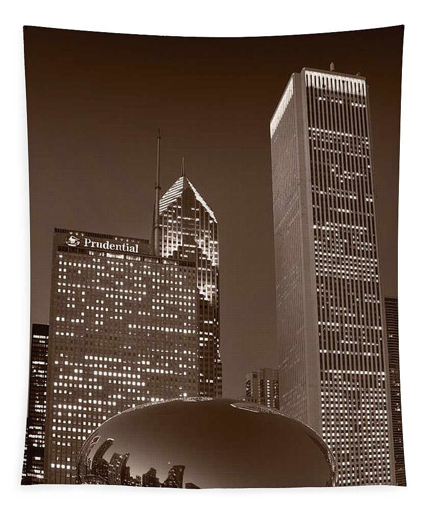 Black Tapestry featuring the photograph Chicagos Millennium Park Bw by Steve Gadomski