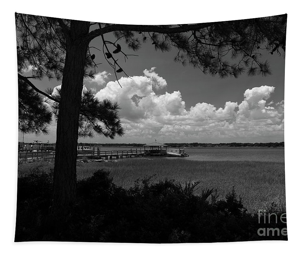 Sullivan's Island Tapestry featuring the photograph Childhood Memories On The Water by Dale Powell