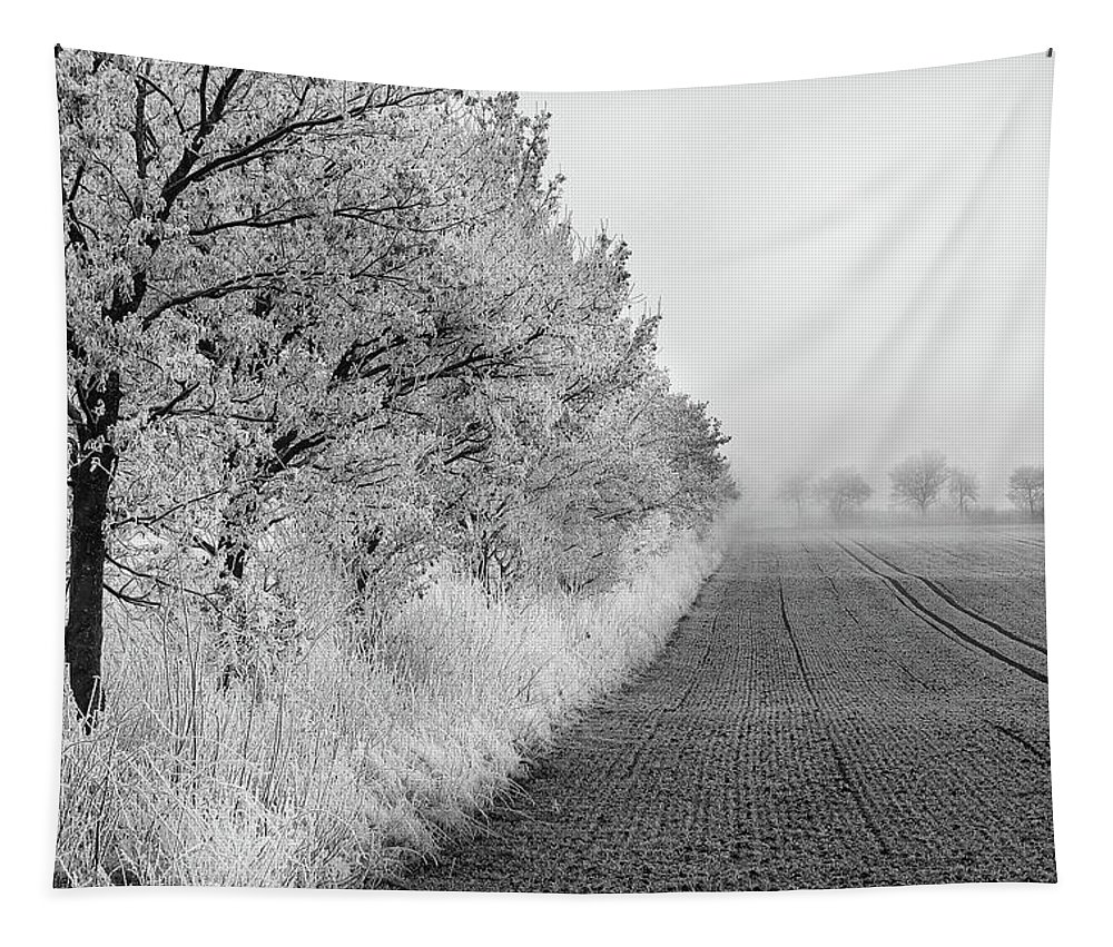 Landscape Tapestry featuring the photograph Chill In The Air by Heiko