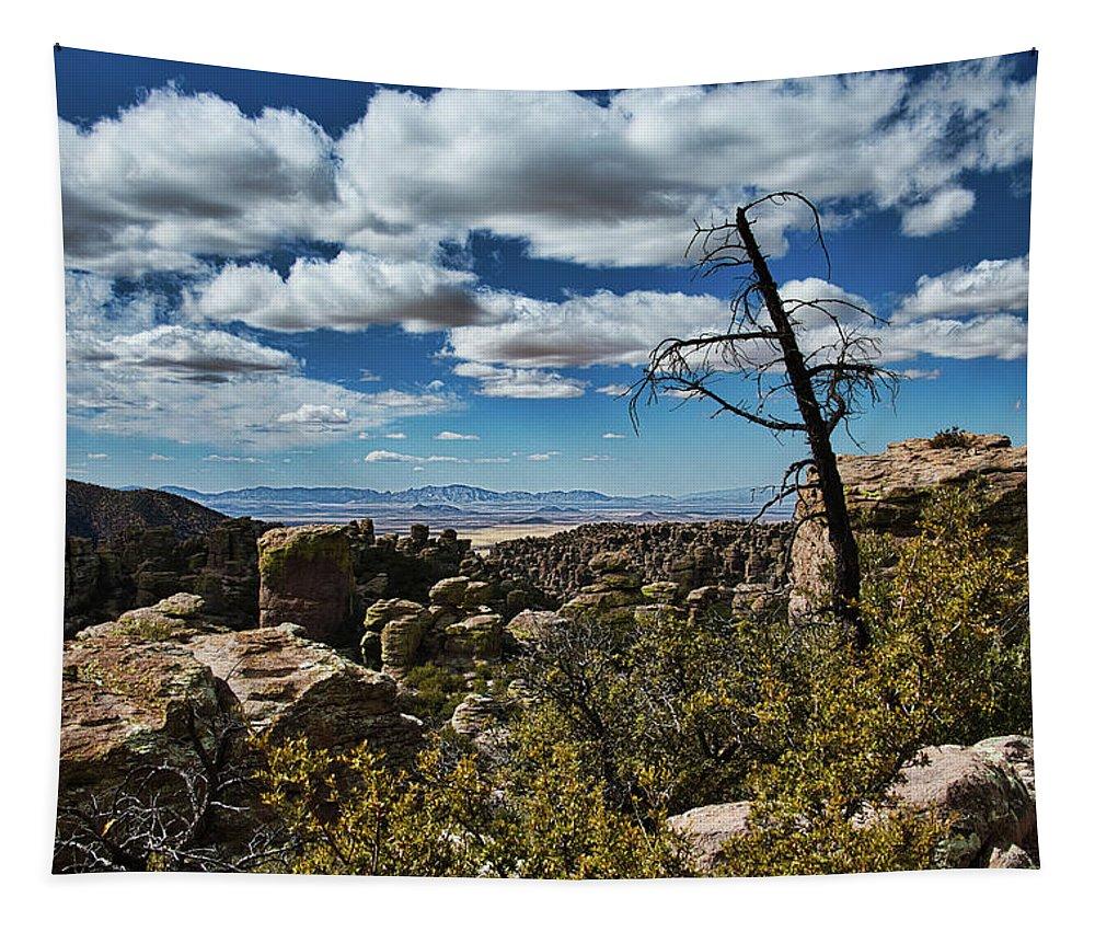 Chiricahua National Monument Tapestry featuring the photograph Chiricahua National Monument by David Thompson