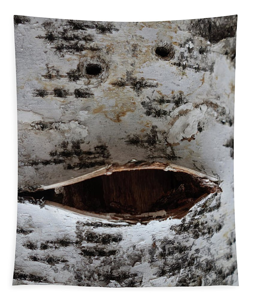 Nature Faces Tapestry featuring the photograph Chirpy Birch by Jacqueline Athmann