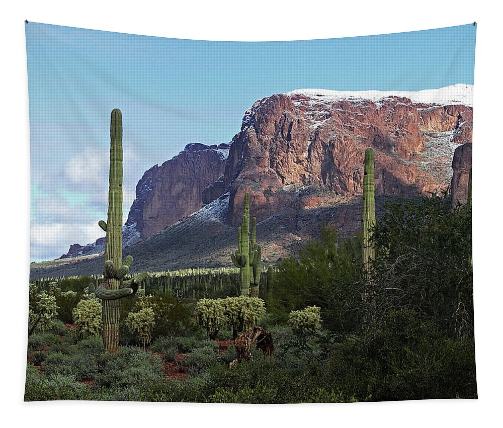 Cholla Saguaro Superstition Mountain Tapestry featuring the photograph Cholla Saguaro Superstition Mountain by Tom Janca