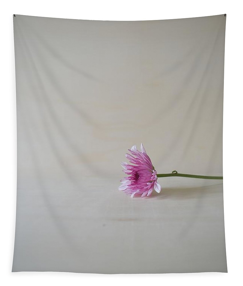 Minimalist Tapestry featuring the photograph Chrysanthemum #018 by Ninie AG
