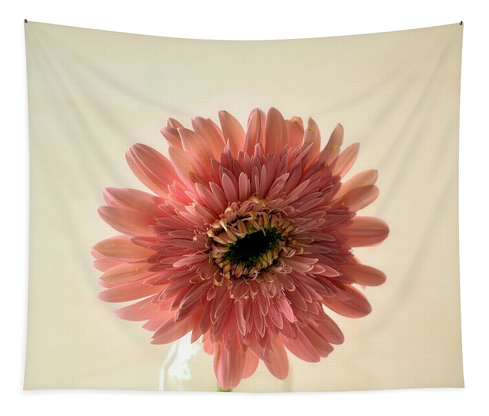 Chrysanthemum Tapestry featuring the photograph Chrysanthemum #029 by Ninie AG