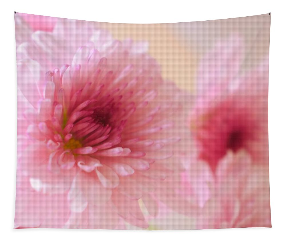 Chrysanthemums Tapestry featuring the photograph Chrysanthemums #011 by Ninie AG