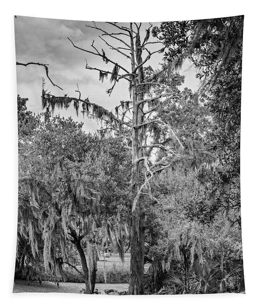 Steve Harrington Tapestry featuring the photograph City Park Lagoon - Bw by Steve Harrington