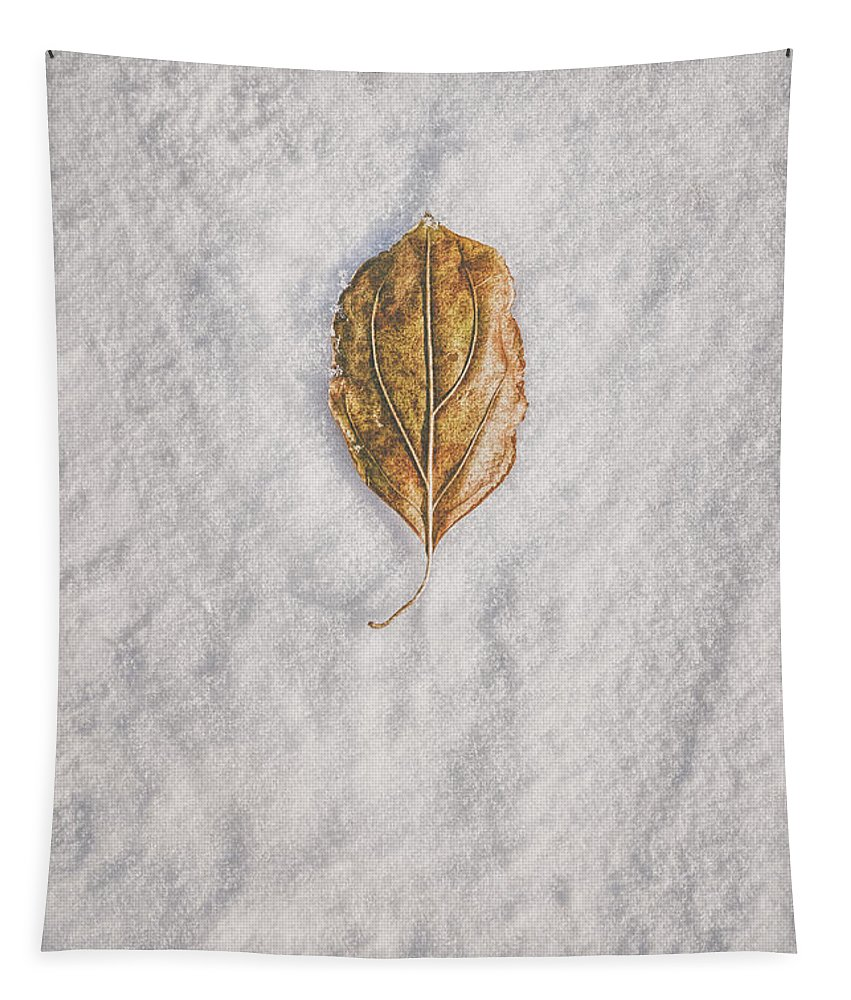Snow Tapestry featuring the photograph Clash Of Seasons by Scott Norris