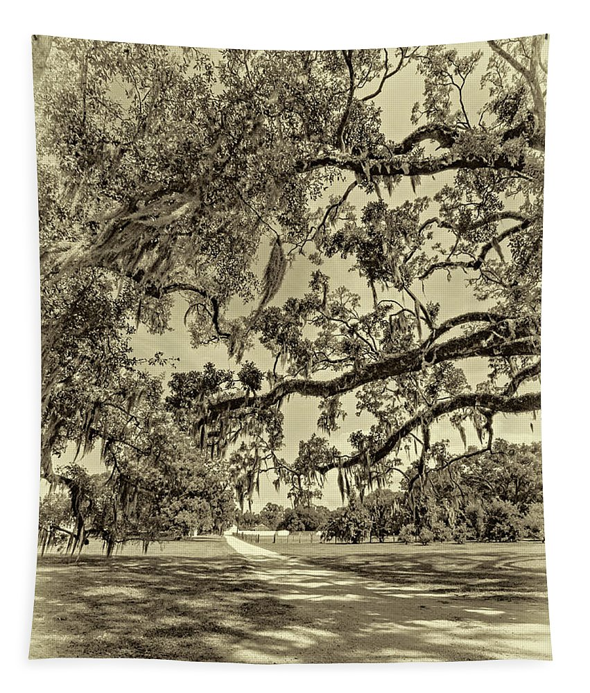Nola Tapestry featuring the photograph Classic Southern Beauty - Evergreen Plantation -sepia by Steve Harrington