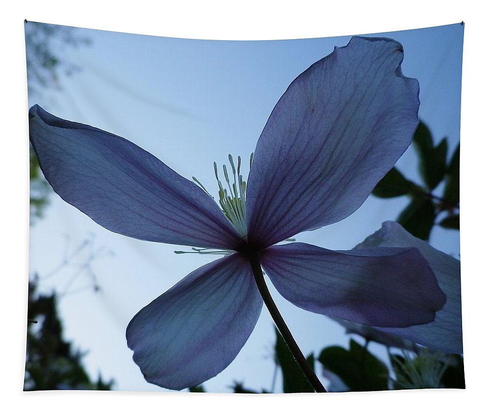 Clematis Tapestry featuring the photograph Clematis At Dusk by Richard Brookes