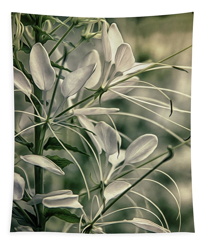 Freshness Tapestry featuring the photograph Close Up Wild Flower by Tom Gari Gallery-Three-Photography
