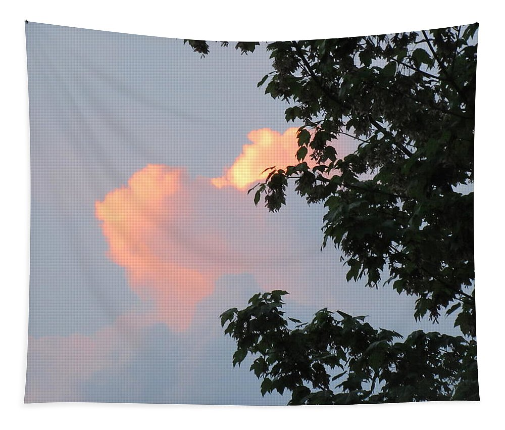 Cloud Tapestry featuring the photograph Cloud And Blue Sky by Lyssjart Sj