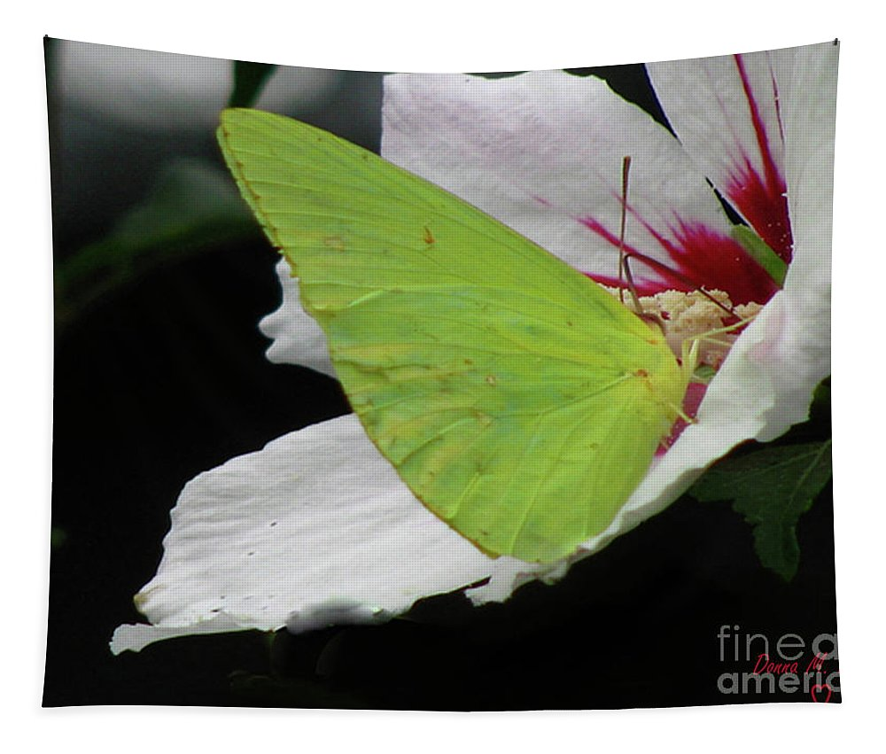 Insect Tapestry featuring the photograph Cloudless Giant Sulphur Butterfly by Donna Brown