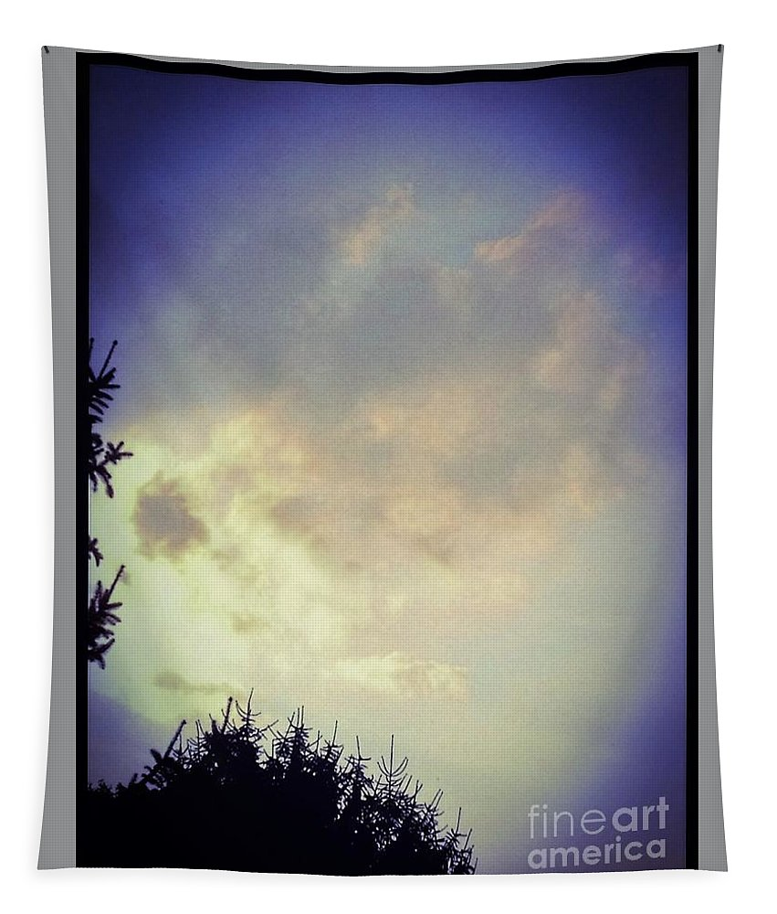 Nature Tapestry featuring the photograph Cloudy Sky Before A Storm by Debra Lynch