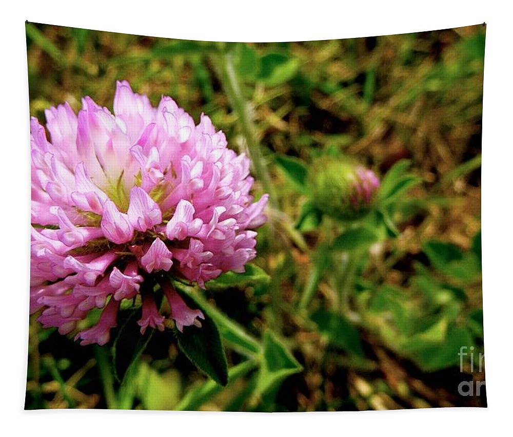 Clover Tapestry featuring the photograph Clover by Melisa Elliott