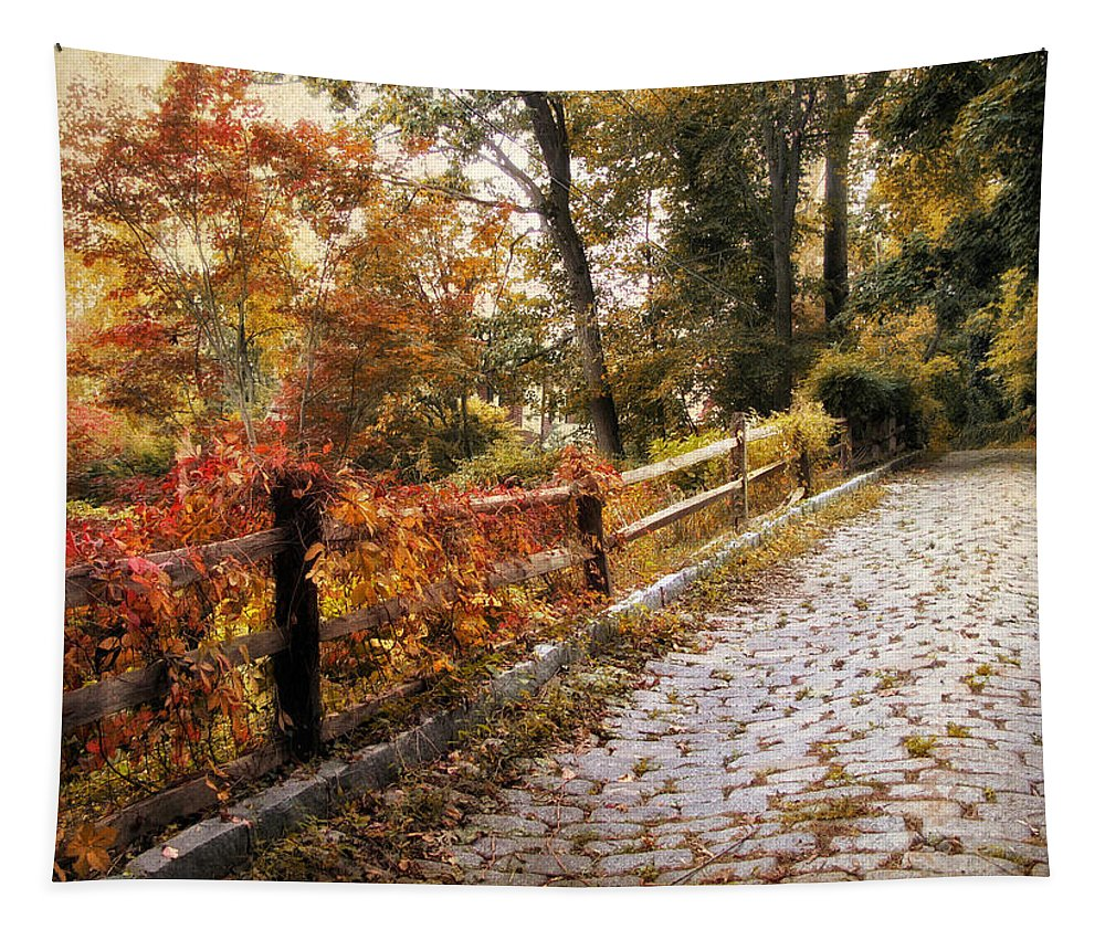 Nature Tapestry featuring the photograph Cobbestone Climb by Jessica Jenney