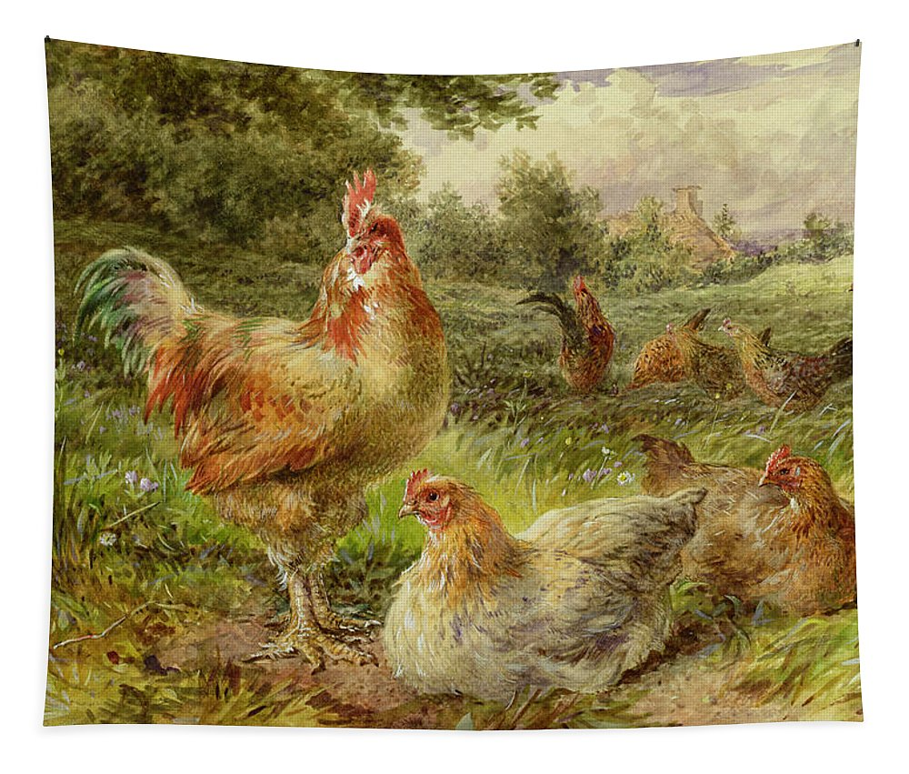 Cochin Tapestry featuring the painting Cochin China Fowls by George Hickin