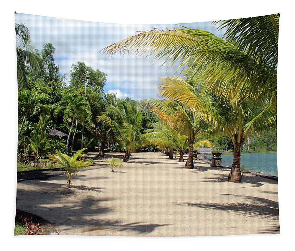 Coconut Beach Tapestry featuring the photograph Coconut Beach by Sergey Lukashin