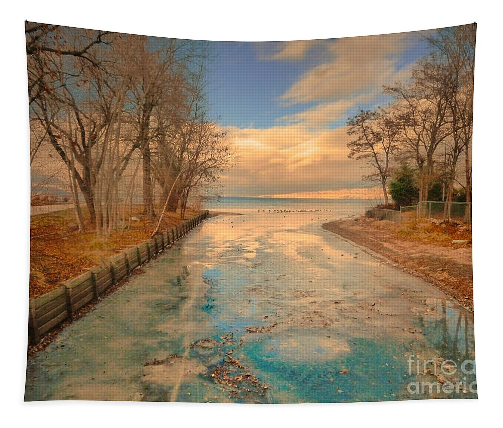 Lake Tapestry featuring the photograph Cold And Warmth by Tara Turner