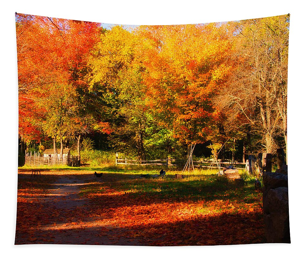 Autumn Tapestry featuring the photograph Colonial Fall Colors by Jeff Folger