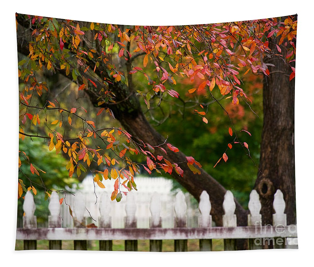Colonial Williamsburg Tapestry featuring the photograph Colonial Fall Colors by Rachel Morrison